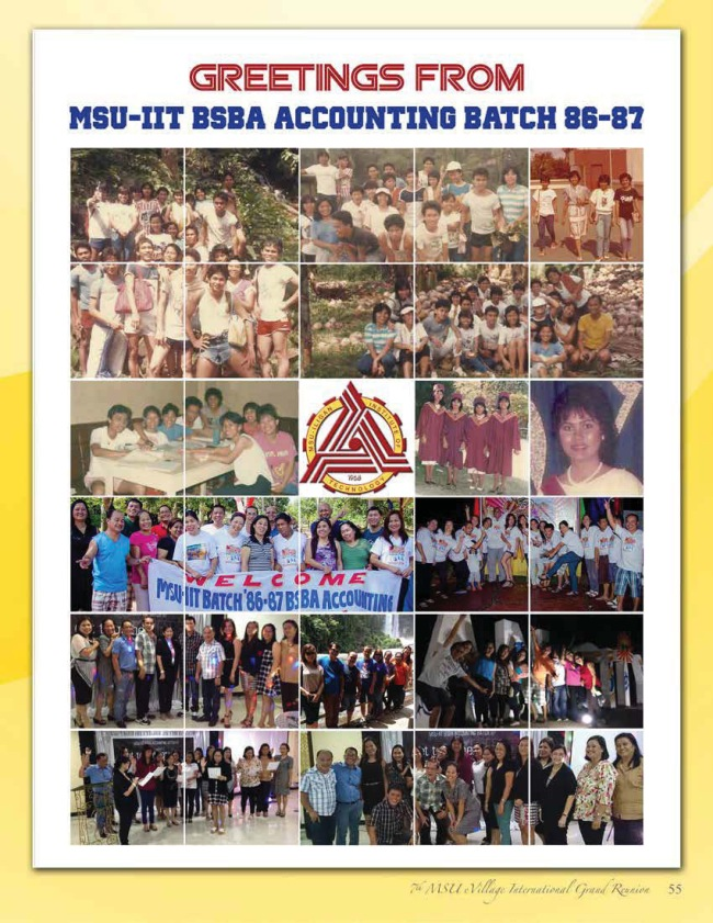 Batch8687-msu-iit-accounting.jpg